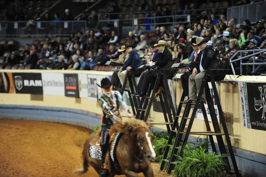 NRHA Announces Judge's Rating System