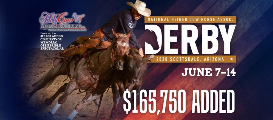 NRCHA Derby Champions Are Crowned in Scottsdale, Arizona