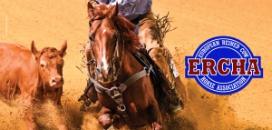 2020 European Reined Cow Horse (ERCHA) Show Season Update