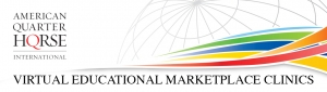 International Educational Marketplace Clinics are Going Virtual