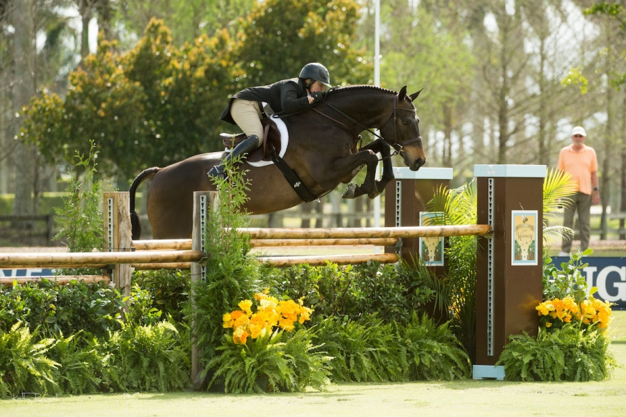 Victoria Colvin and El Primero were the Overall Champions of the $50,000 USHJA International Hunter Derby at the Deeridge Derby.