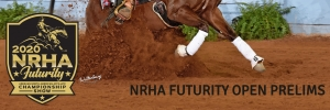 National Reining Horse Association (NRHA) Open Futurity Prelims