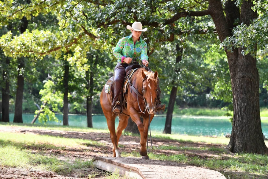 New Aqha Classes Available