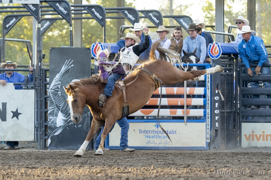 Kaycee Feild riding Knot On The Bar