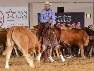 Boyd Rice and Quahadi, owned by Burnett Ranches LLC marked a 218 in Open Two Rein Spectacular herd work.