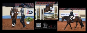2020 Built Ford Tough AQHYA World Championship Show