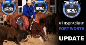 NCHA Executive Committee Passes New Changes in Response to COVID-19 Cases in Texas