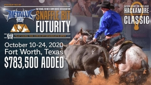 2020 Metallic Cat National Reined Cow Horse Snaffle Bit Non Pro Champions